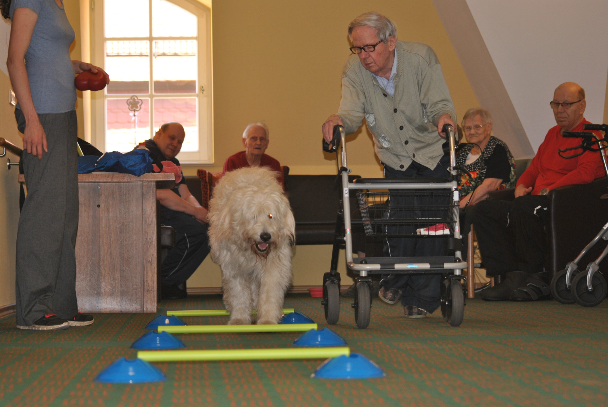 Tiergestützte Förderung mit Senioren