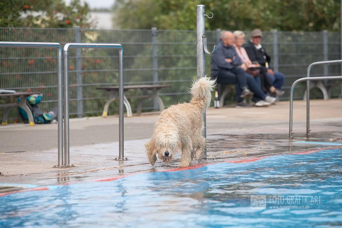 Eiki im Schwimmbad