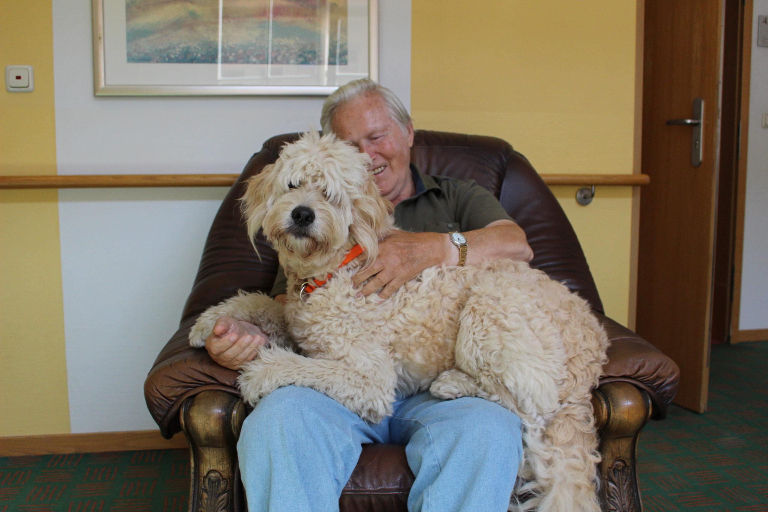 Tiergestützte Förderung im Seniorenheim